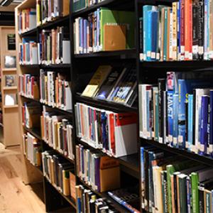 Bild på böcker i hylla